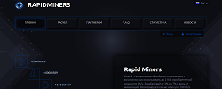rapidminers.com